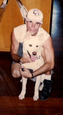 Adestramento de Cães - Foto 2