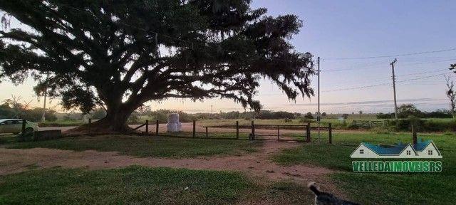 Velleda oferece bar da figueira, 2,3 hectares + ponto histórico de viamão - Foto 6