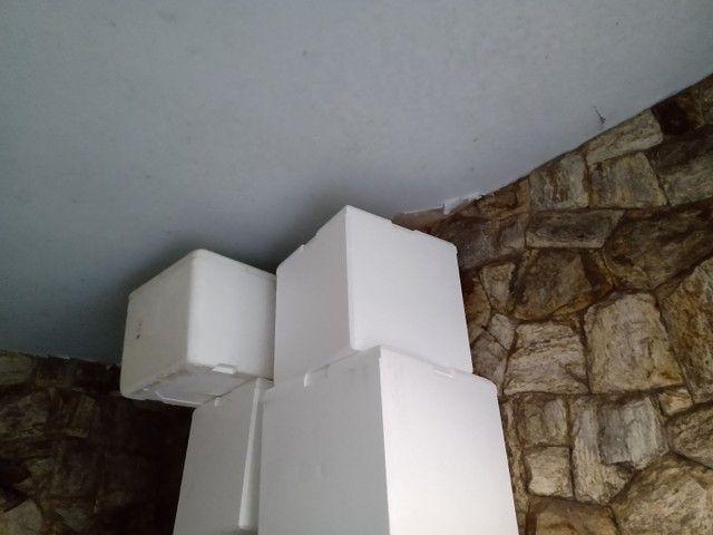 Caixas de isopor Aparti de 15 reais temos de 12 litros 24 litros 50 litros e 100 litros