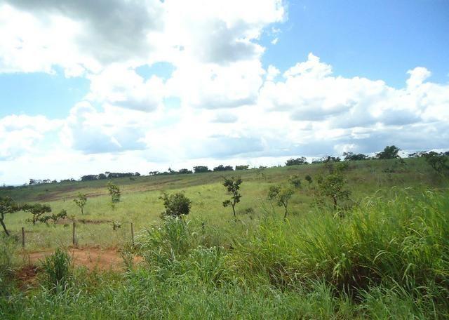 Área - Rodovia BR 060 Imobiliária Azevedo Gomes - Foto 4