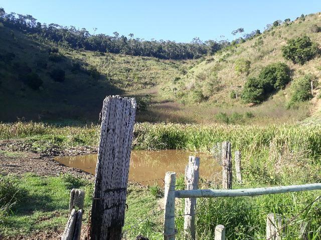 Fazenda com 174 hectares barra de são francisco - Foto 2
