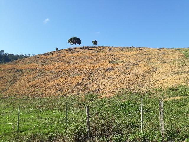 Fazenda com 174 hectares barra de são francisco - Foto 8