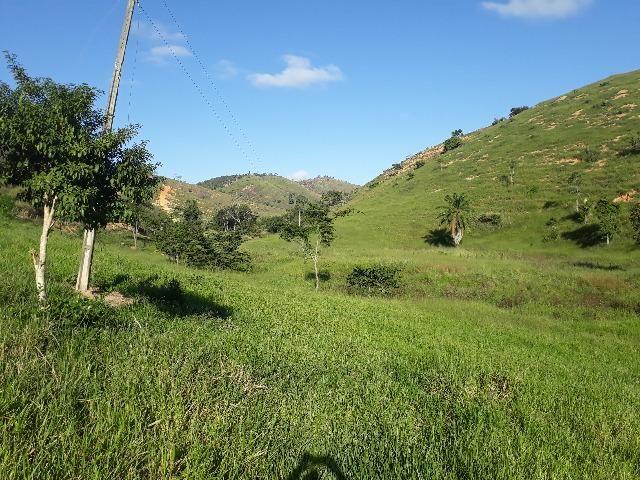 Fazenda com 174 hectares barra de são francisco - Foto 4