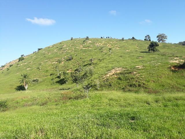 Fazenda com 174 hectares barra de são francisco - Foto 12