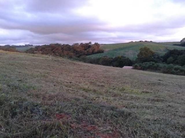 REF. 2458 - Terreno com 689,60m², no Mato Branco Contenda - Foto 4