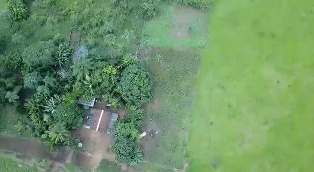 Chácara em Palmeiras de Goiás, as margens do Rio dos Bois - Foto 7