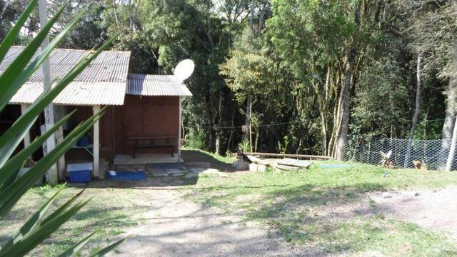 REF ? 2404 - Chácara com 2,400 m² localizada no capinzal com 3 nascente - Foto 2