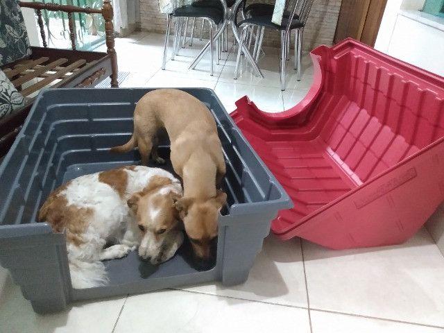 Casinha de cachorro grande - Foto 5