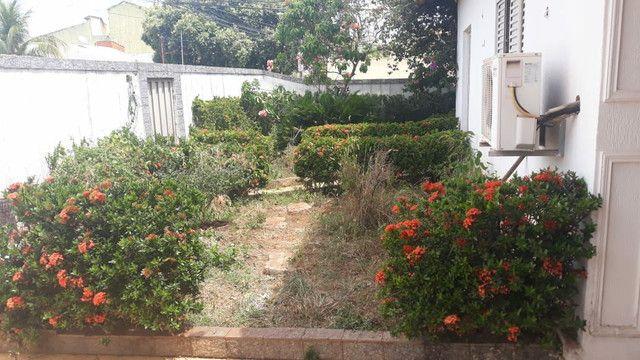 Limpeza de  terrenos  - Foto 2