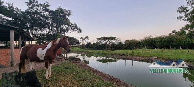 Velleda oferece bar da figueira, 2,3 hectares + ponto histórico de viamão - Foto 17