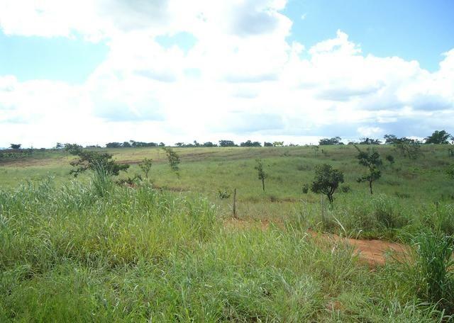 Área - Rodovia BR 060 Imobiliária Azevedo Gomes