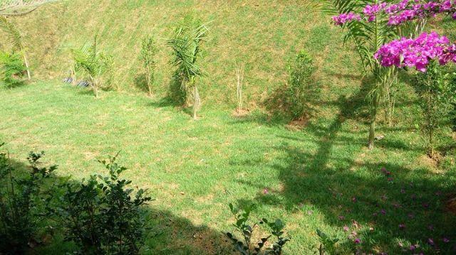 Fornecimento e plantio de Grama Esmeralda, Batatais para toda RMC e Estado