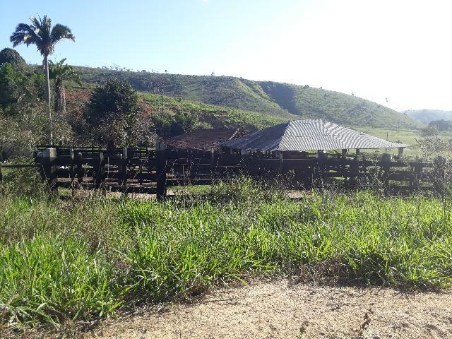 Fazenda com 174 hectares barra de são francisco