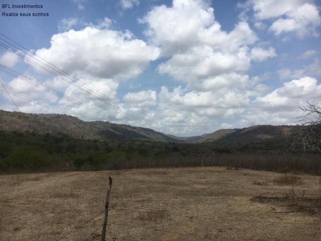 Fazenda em gravata 502 hectares, terreno amplo sen um vale com passagem de rio 8km da br23 - Foto 6