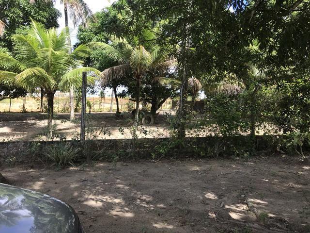 Granja, sítio, fazenda em Igarassu, 4 hectares com bastante benfeitorias! - Foto 16