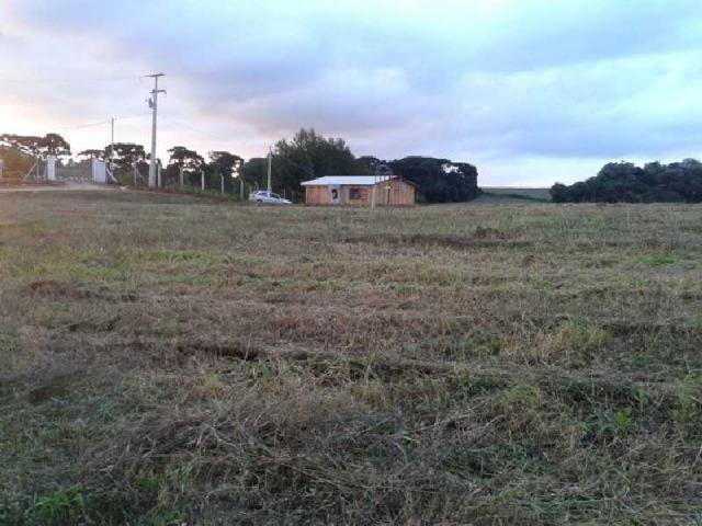 REF. 2458 - Terreno com 689,60m², no Mato Branco Contenda - Foto 3