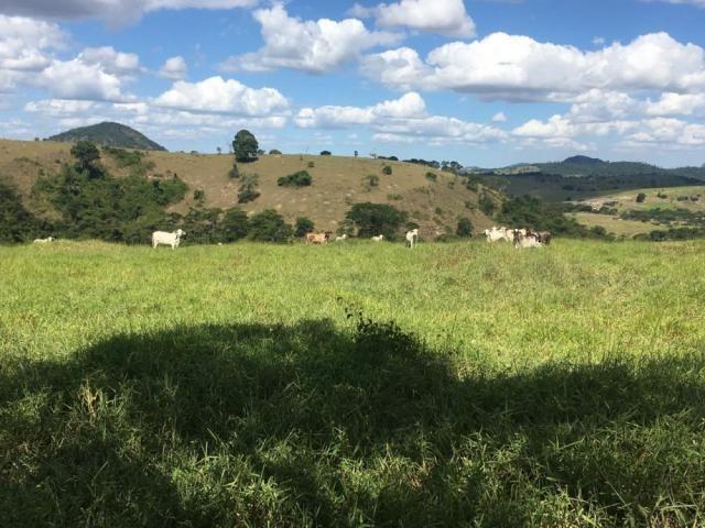 Fazenda - Centro Guaratinga - Foto 2