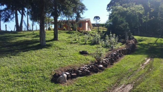 Chácara Bocaiuva do Sul - Foto 4