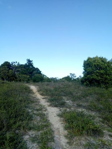 Duas áreas de terras - Foto 2