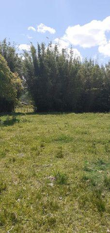 Chacara de 2 hectares á 7 km da br 293 - Foto 13