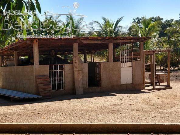 Fazenda Pecuaria 322 Hectares Plana - Foto 10