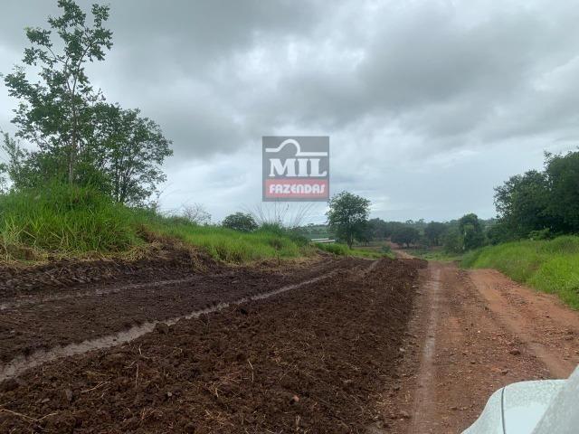 Área irrigada ( pivo central ) Fazenda 68 alqueires ( 333 hectares ) Morrinhos-GO - Foto 13