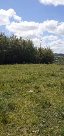 Chacara de 2 hectares á 7 km da br 293 - Foto 15