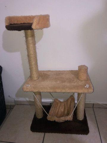 Arranhador Gatos Completo