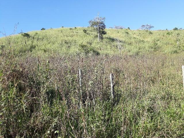 Fazenda com 174 hectares barra de são francisco - Foto 11
