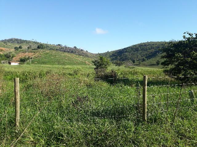 Fazenda com 174 hectares barra de são francisco - Foto 3