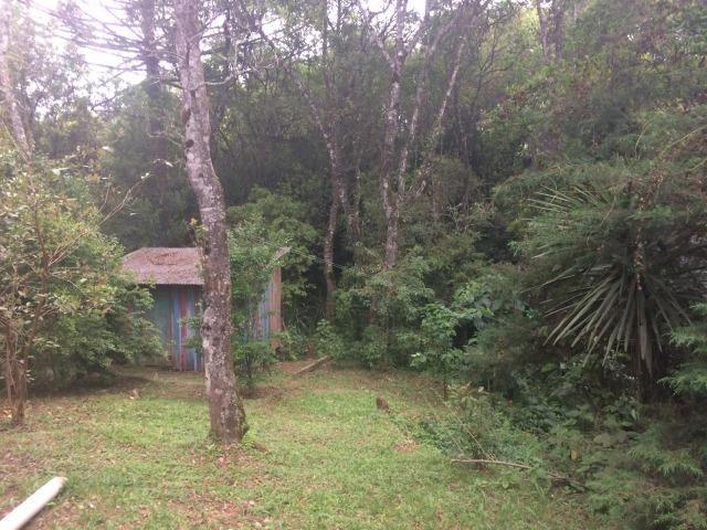 REF ? 2404 - Chácara com 2,400 m² localizada no capinzal com 3 nascente - Foto 19