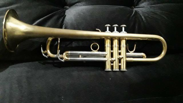 Trompete Eagle - Foto 3