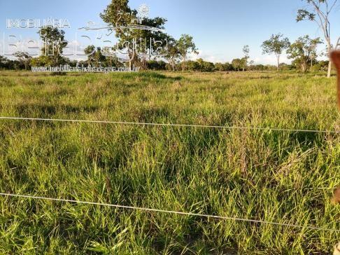 Fazenda Pecuaria 322 Hectares Plana