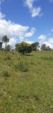 Chacara de 2 hectares á 7 km da br 293 - Foto 18