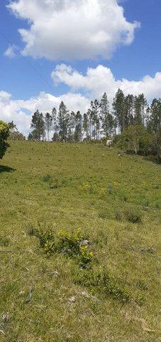 Chacara de 2 hectares á 7 km da br 293 - Foto 20