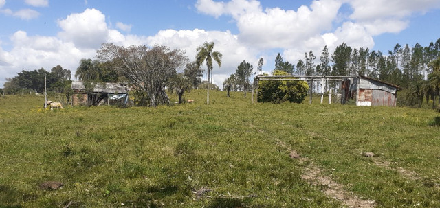 Chacara de 2 hectares á 7 km da br 293