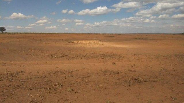 Fazenda Oportunidade de investimento  - Foto 14