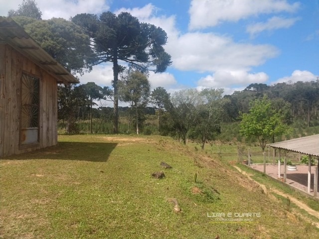 Chácara para Venda em Quitandinha Rio Negrinho-SC - Foto 7
