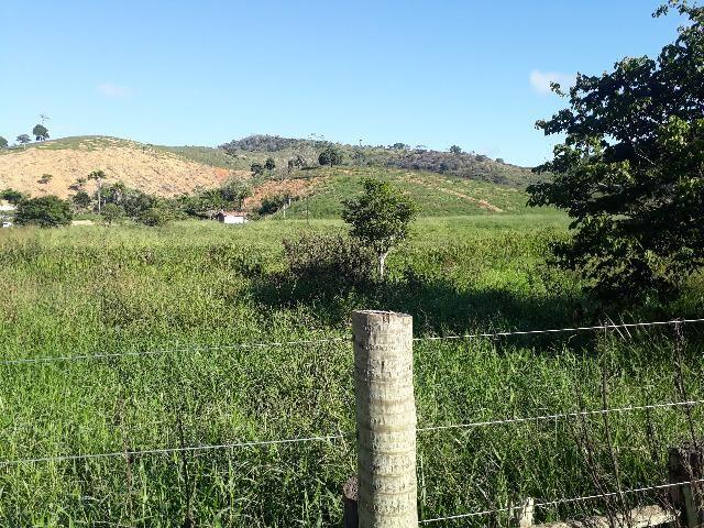 Fazenda com 174 hectares barra de são francisco - Foto 10
