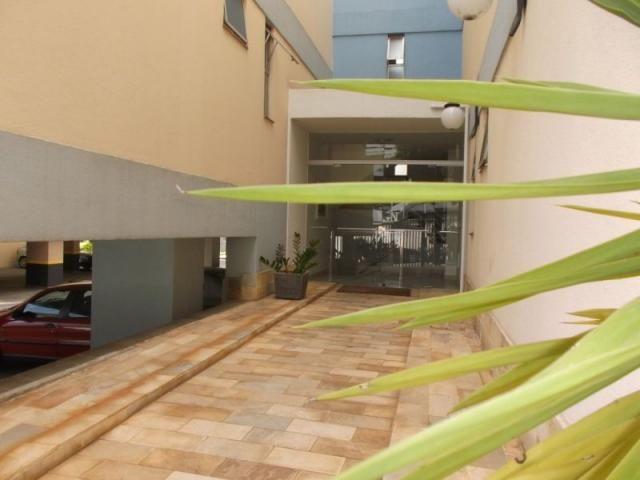 Apartamento à venda com 3 dormitórios em Estoril, Belo horizonte cod:1101 - Foto 2