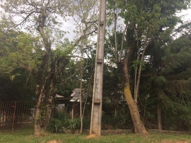 REF ? 2404 - Chácara com 2,400 m² localizada no capinzal com 3 nascente - Foto 20