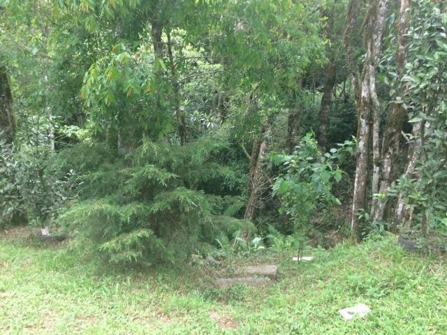 REF ? 2404 - Chácara com 2,400 m² localizada no capinzal com 3 nascente - Foto 4