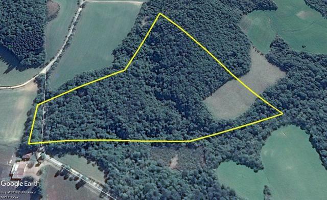 Ref. 1944-2 Chácara com 96.000 m², Localizada na Colônia Municipal ? Lapa