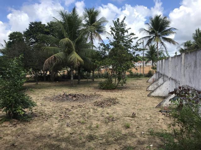 Granja, sítio, fazenda em Igarassu, 4 hectares com bastante benfeitorias! - Foto 11