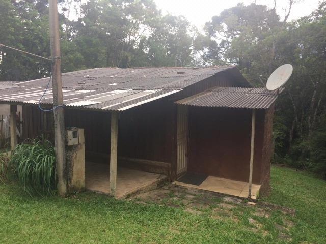 REF ? 2404 - Chácara com 2,400 m² localizada no capinzal com 3 nascente - Foto 9