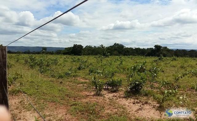 Fazenda 1500 hectares, com dupla aptidão, na Região Serra azul, Mato Grosso - Foto 11