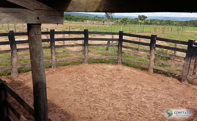 Fazenda 1500 hectares, com dupla aptidão, na Região Serra azul, Mato Grosso - Foto 17