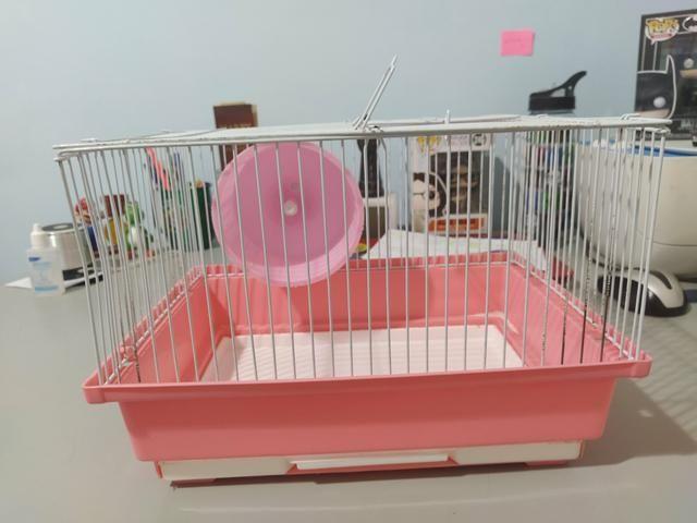 Gaiola Simples para Hamster