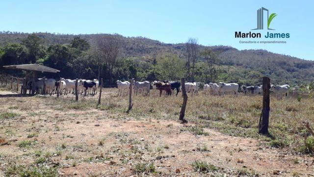 Fazenda em Cocalzinho-G! - Foto 14