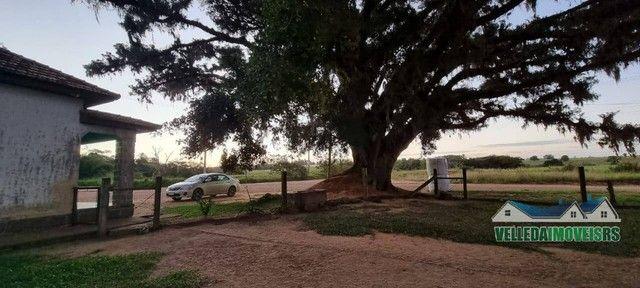 Velleda oferece bar da figueira, 2,3 hectares + ponto histórico de viamão - Foto 3